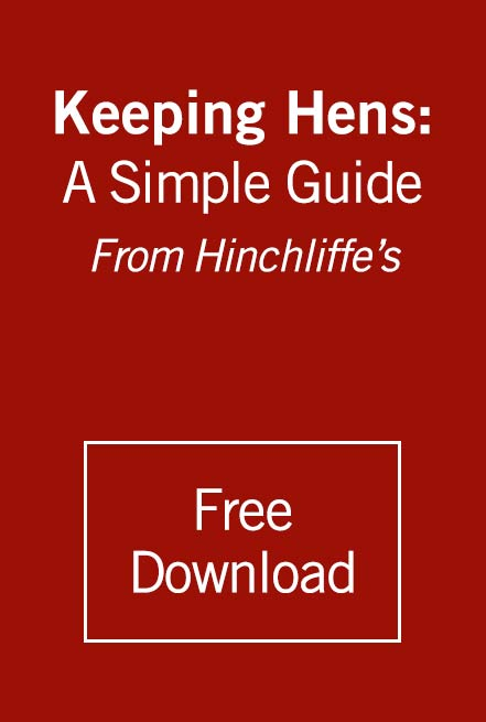 Keeping Hens: A Simple Guide from Hinchliffe's. Download Button